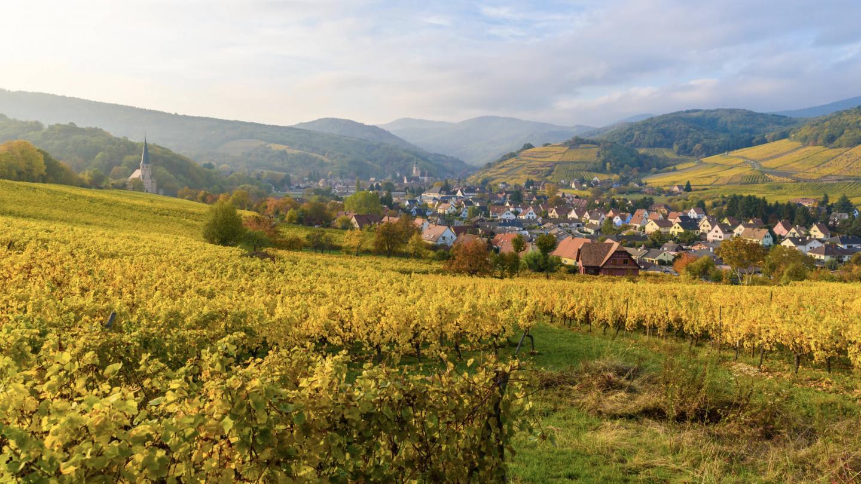 2nd International Research Workshop on Wine Tourism - EM Strasbourg