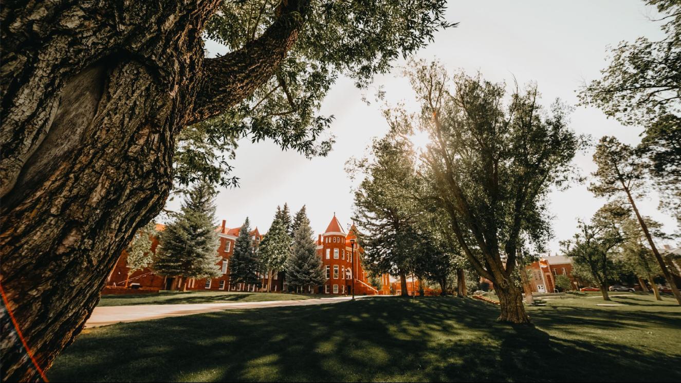 Northern Arizona University - EM Strasbourg