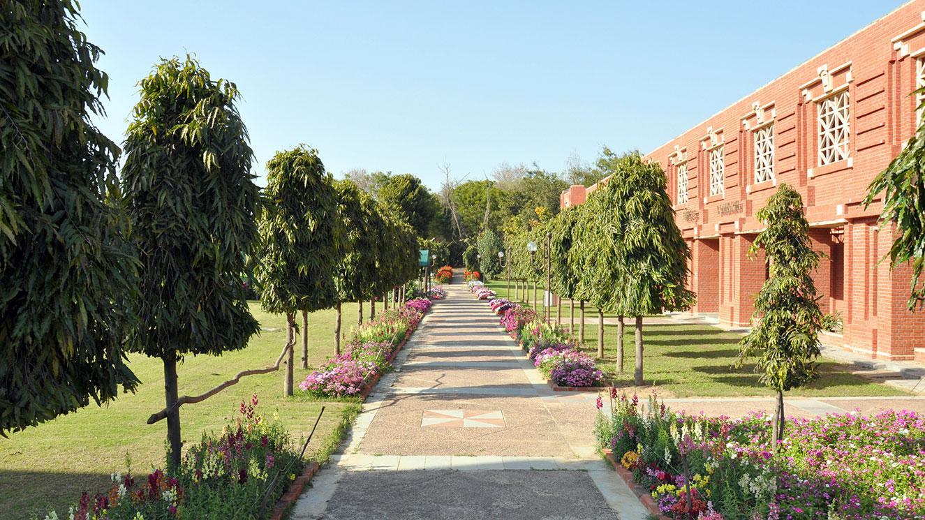 Indian Institute Of Management - Lucknow - EM Strasbourg